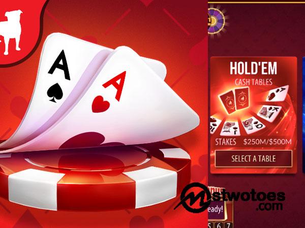 Zynga Poker - How to Play Poker Online at Zynga Poker